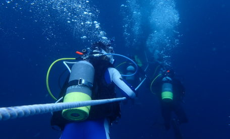 潜降するダイバー