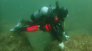水中のダイバー